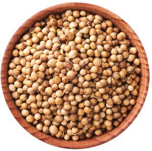 A bowl of cilantro seeds.